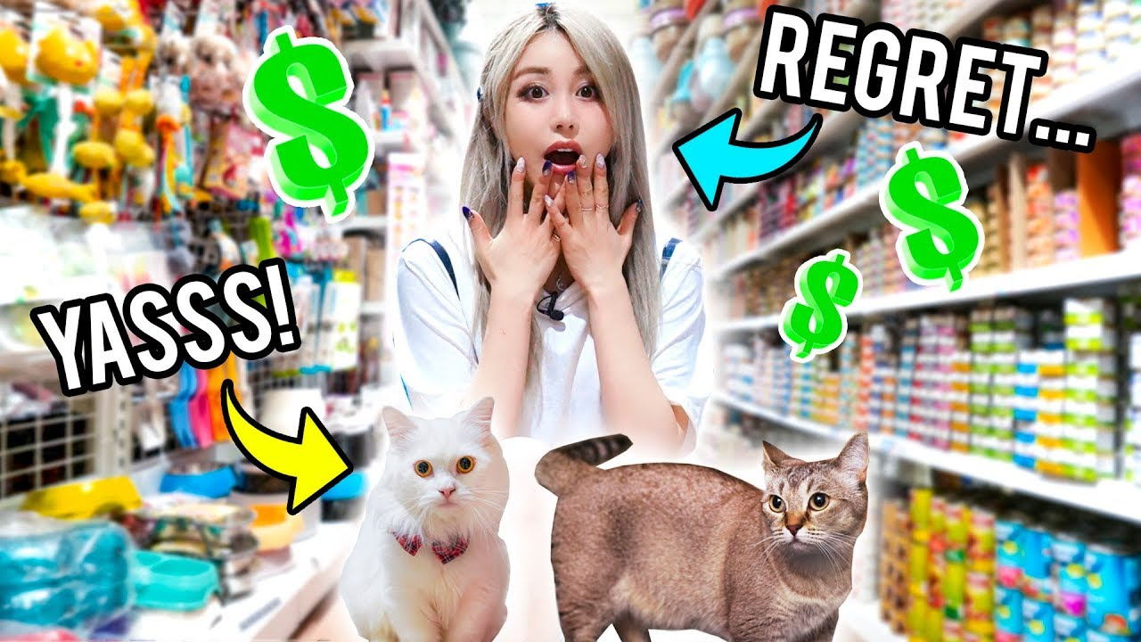 Buying My Cats Everything They Touch!