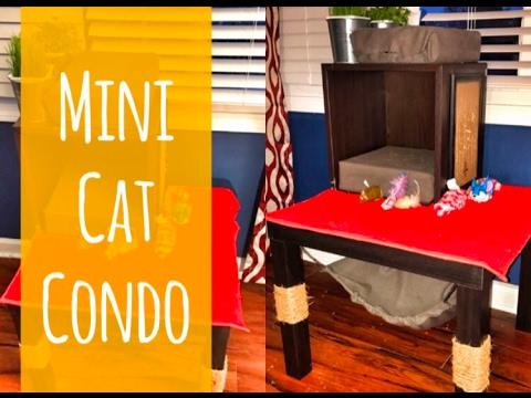Mini Cat Condo Tutorial - DIY by Da'Mon Cortez