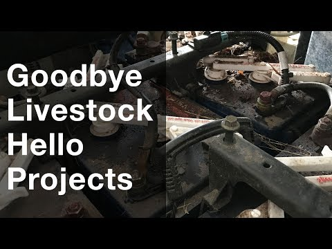 Instafarm: Goodbye Livestock Hello Projects