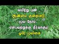 Thotta Sinungi Medicinal Uses In Tamil Health Tips In Tamil mp3