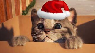 Download ПРИКЛЮЧЕНИЕ МАЛЕНЬКОГО КОТЕНКА мультфильм про котят для малышей Новый мультик для детей #ММ Video