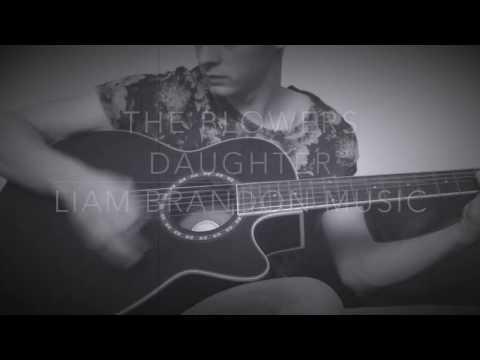 Liam Brandon Music - Damien Rice - The Blowers Daughter