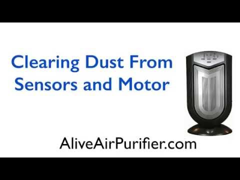 Alive Air Purifier -Clearing Dust From Sensors and Motor