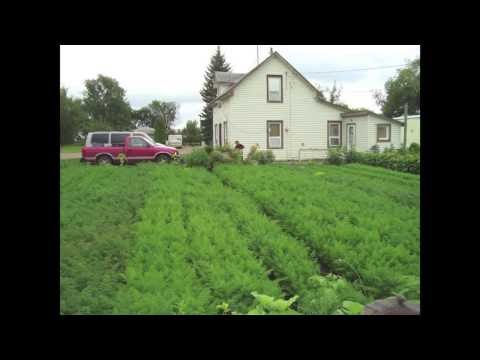 Grow Food, Make Money! YOU can do it!