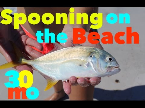 SURF FISHING -