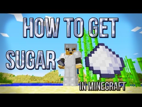 How To Make Sugar In Minecraft