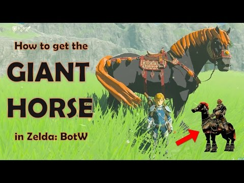 How to get the GIANT HORSE in Zelda: Breath of the Wild!