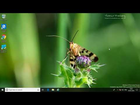 How to Restart Audio Driver in Windows 10 (Tutorial)