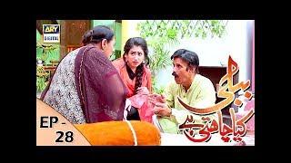 Bubbly Kya Chahti Hai Episode 28 - 14th December 2017 - ARY Digital Drama