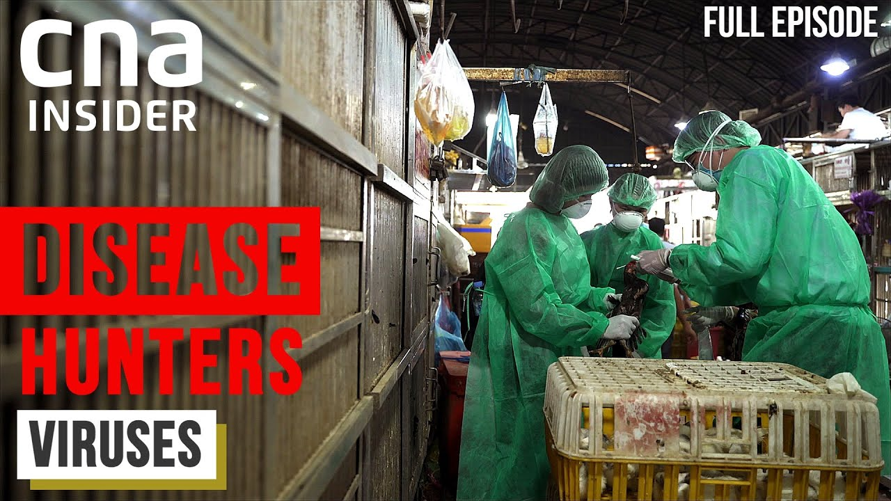 Meet The Virus Hunters: Before The Next Pandemic Strikes | Disease Hunters | Part 1/3