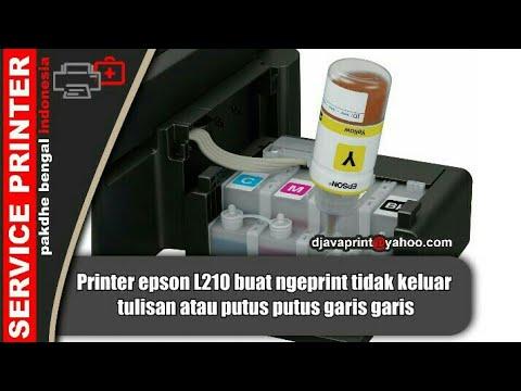 Printer epson L210 buat ngeprint tidak keluar tulisan atau putus putus garis garis