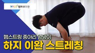 대전도수치료-강력한 햄스트링 스트레칭(with.대전엠허브의원.라파본TV)