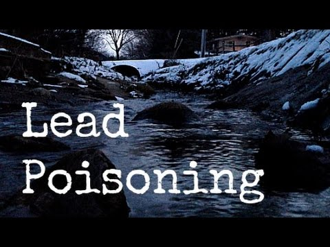 Why Lead Poisoning is so Dangerous