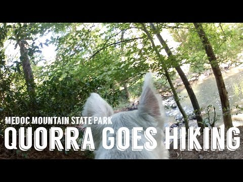 Quorra Goes...Hiking! Medoc Mountain State Park July 2017
