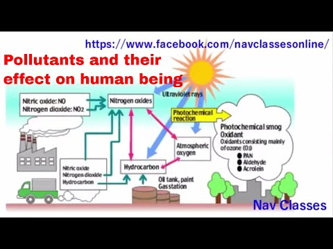 CBSE UGC NET people & Environment || Pollutants and their effect on human being || class 5