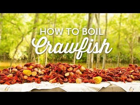 How to Boil Crawfish | Louisiana Recipe | BBQGuys.com