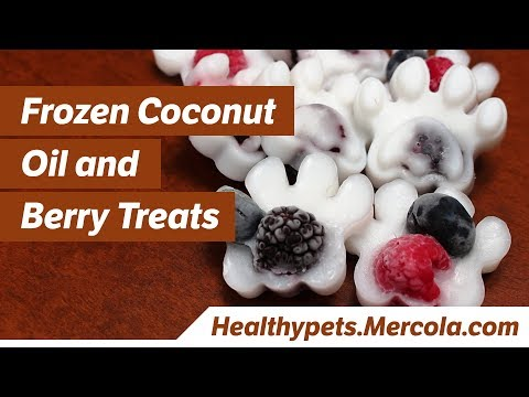 Frozen Coconut Oil and Berry Treats