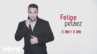 Felipe Peláez, Zabaleta - Te Amo y Te Amo (Cover Audio)