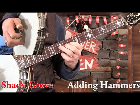 Shady Grove- 3-Finger Banjo Lesson in D Minor!