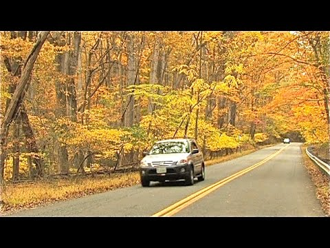 Why A Tire Pressure Monitor System Light Comes On In The Fall