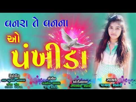 Xxx Mp4 ગુજરાતી નવું ગીત 2017 વનરાંતે વન ના ઓ પંખીડા Payal Rabari Gujarati New Song 2017 3gp Sex
