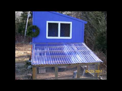 Building a Chicken Coop (FREE PLANS)