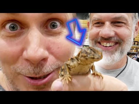 SHOULD I GET THIS NEW REPTILE?? ALL ANIMAL EXPO WITH CHEWY  | BRIAN BARCZYK