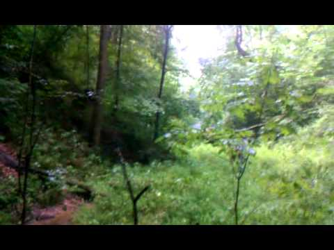 CAVE RUN 32 ACRES WITH POND, HUGE CAVE & WOODS