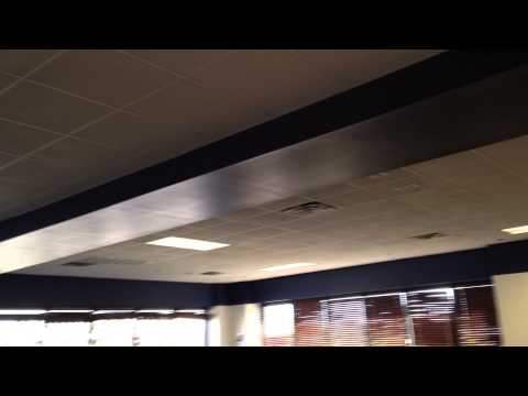 beefs ceiling tampa