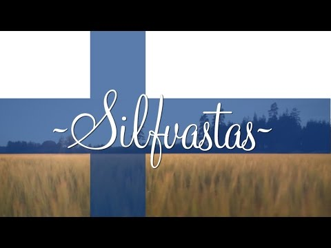 Silfvastas Cabin Rental - Authentic Country Atmosphere in Southern Finland