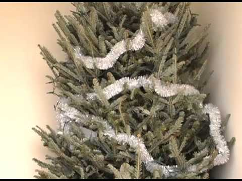 FARGO FIRE DEPARTMENT - CHRISTMAS TREE FIRE SAFETY