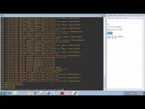 Cisco Network CCNP MPLS - Express Forwarding