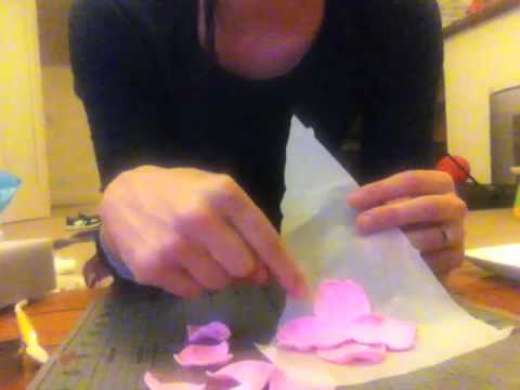 Easy Fondant Flower Tutorial
