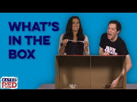 "Paxton and Montgomery Freak Out Over ""What's in the Box?"""