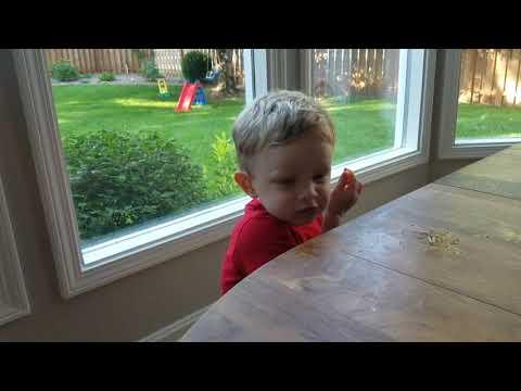 Hello, im calling from my new orange pepper phone.