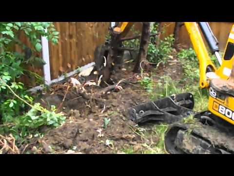 JCB Micro 8008 tree stump removal DMS Micro Digger Hire With Operator