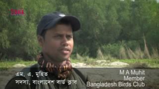 Birds Survey of Bangladesh - বাংলাদেশের পাখিশুমারী তথ্যচিত্র
