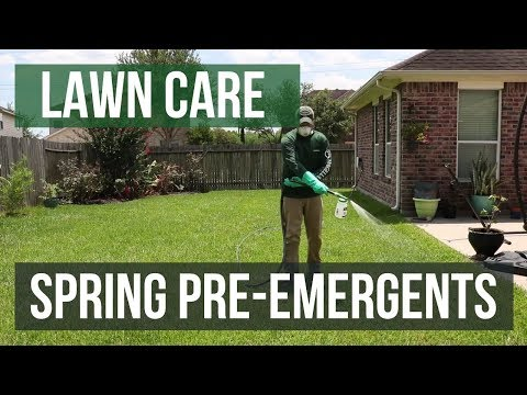 Spring Pre-Emergents: A Lawn Care Guide
