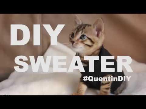 DIY - Cat Sweater