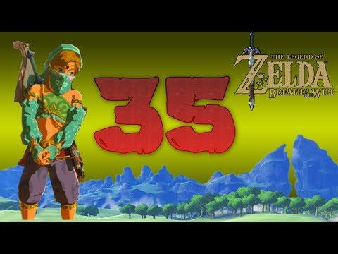 Zelda Breath of The Wild [35]: Dude Looks Like