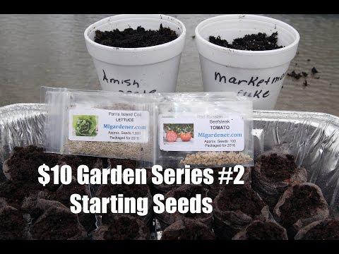 The $10 Garden Series #2- How to Start Seeds Indoors
