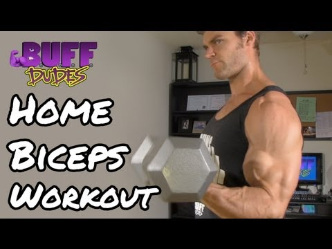 Home Workout Routine - Arms / Biceps Dumbbell Exercises