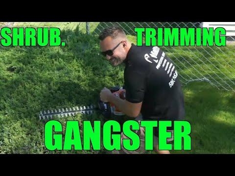 YouTube Vlogger Landscaping Dude !