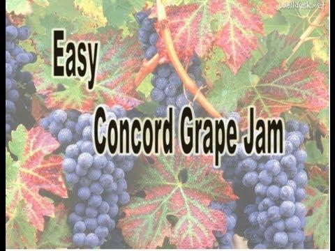 Easy Concorde Grape Jam