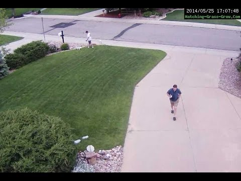 May 25th, 2014: A Dog POOPS on the Lawn at Watching Grass Grow