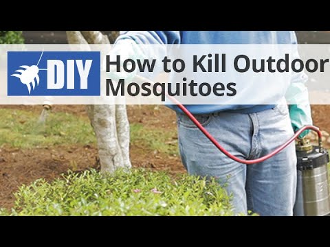 How to Get Rid of & Kill Mosquitoes in the Yard - Outdoor Mosquito Control