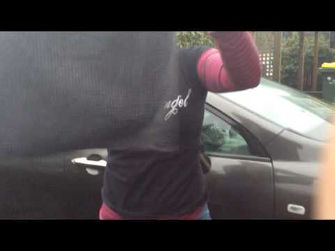 Norwex - Clean your car in 10 mins!