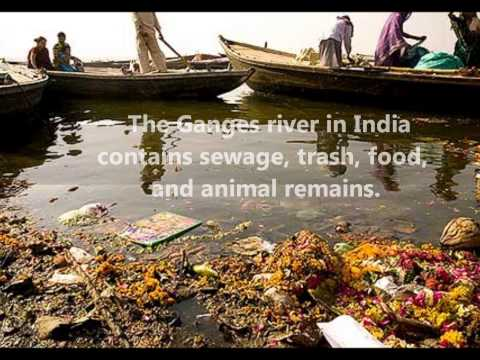 Stop Water Pollution!