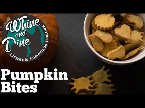 Halloween Bites | Homemade Pumpkin Dog Treats