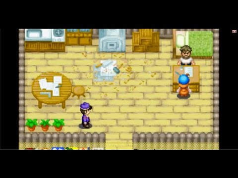 Vacation House (Harvest Moon Friends of Mineral Town)
